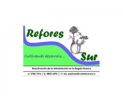 REFORES_SUR