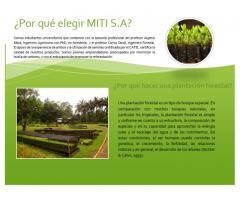 Empresa Forestal MITI S.A.