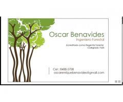 Servicios y Regencias forestales O&B.