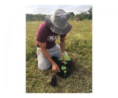 Fincas o terrenos para realizar jornadas de reforestación para Bandera Azul Ecológica